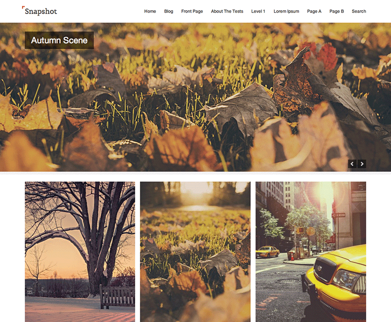 Snapshot free wordpress theme