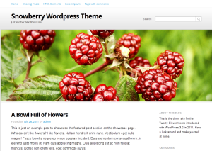 Snowberry free wordpress theme