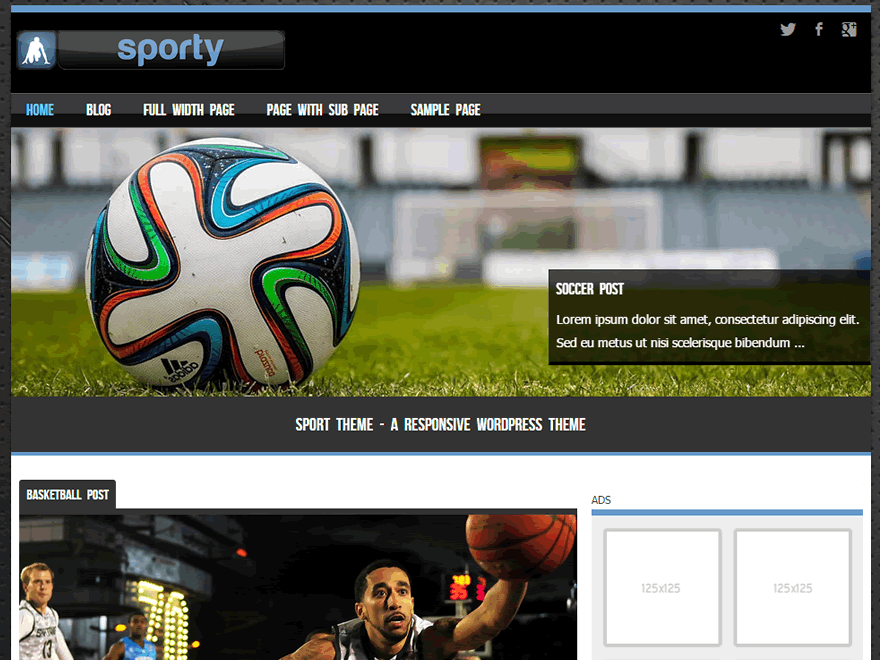 Sporty free wordpress theme