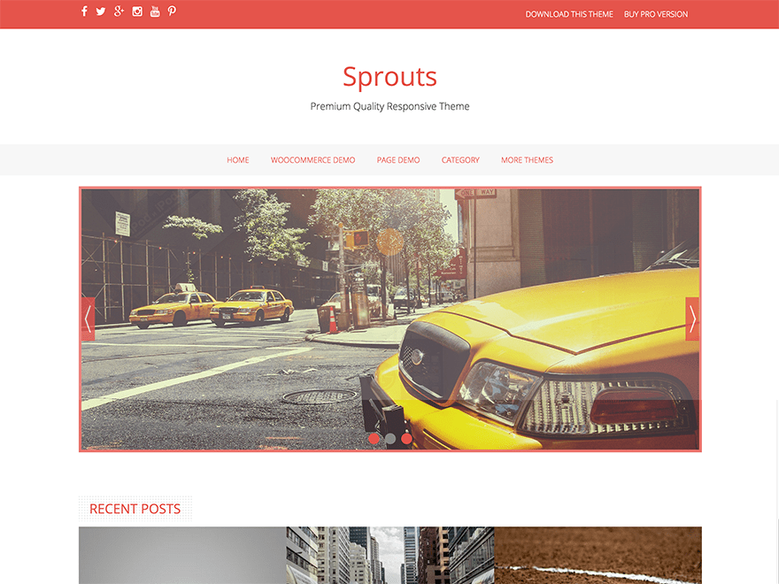 Sprouts free wordpress theme