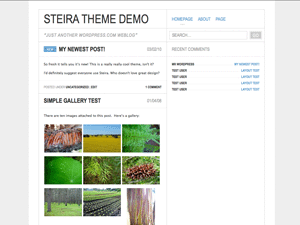 Steira free wordpress theme