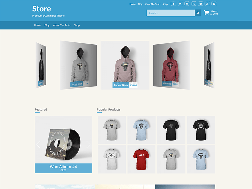 Store free wordpress theme