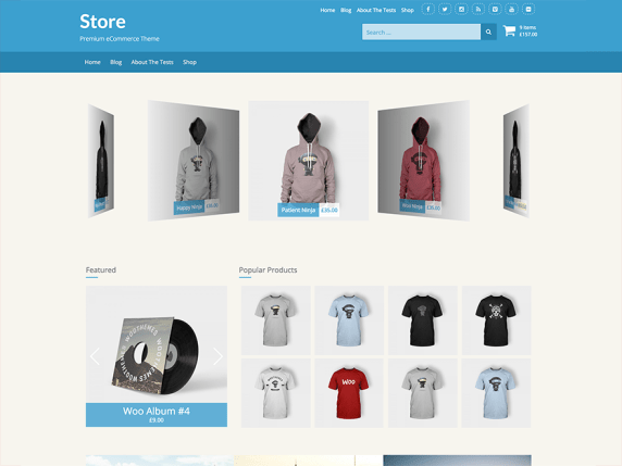 Store wordpress theme