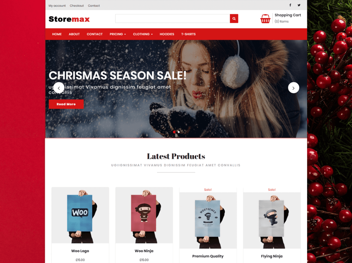 Storemax Theme Free Download
