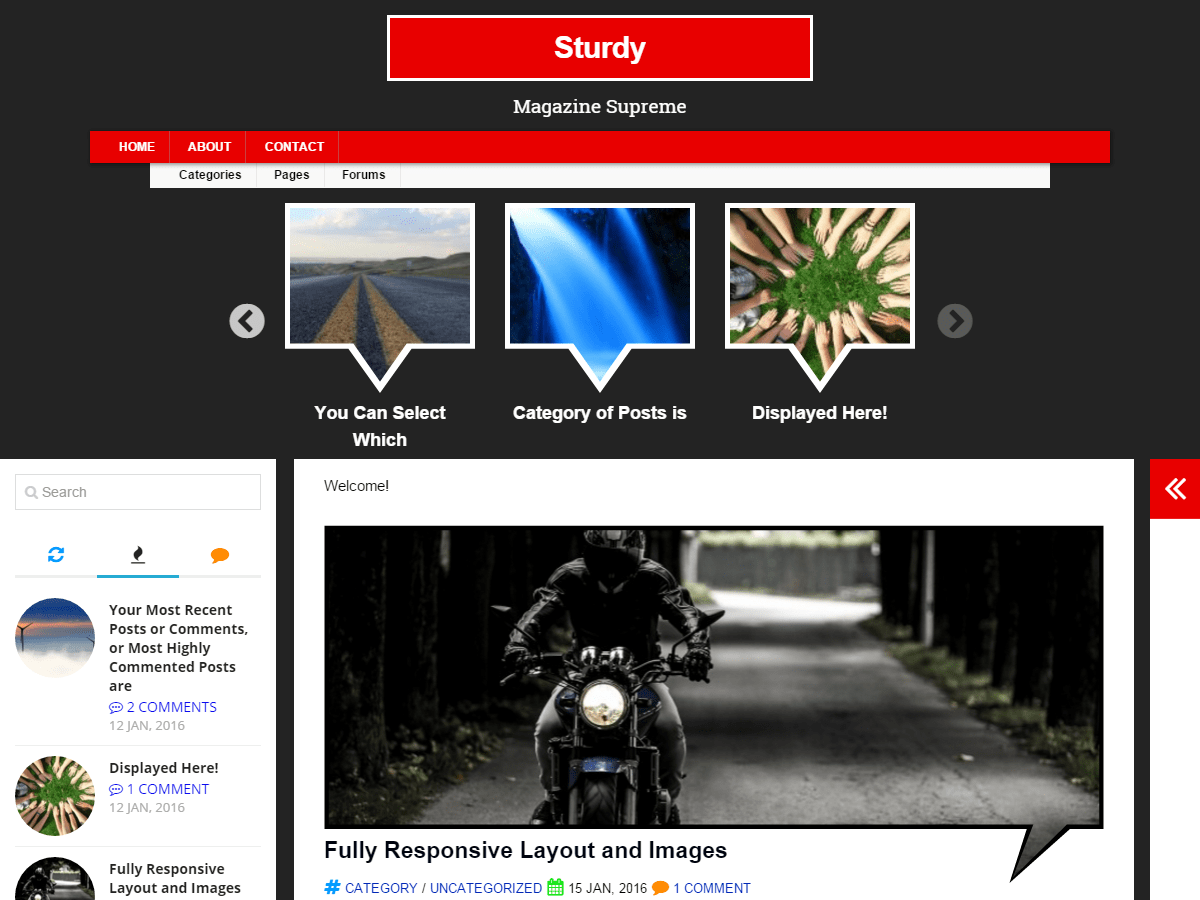 Sturdy free wordpress theme