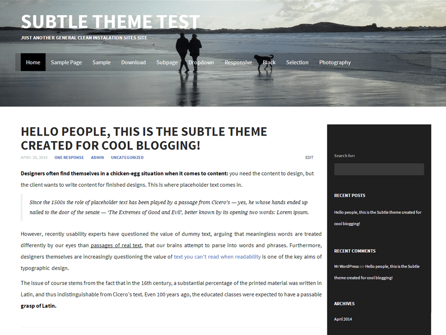 Subtle free wordpress theme