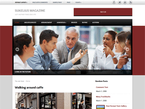 Sukelius Magazine wordpress theme