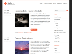 Surface free wordpress theme