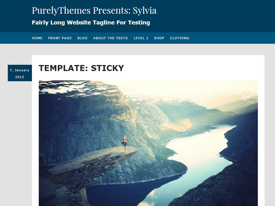 screenshot of sylvia wordpress theme