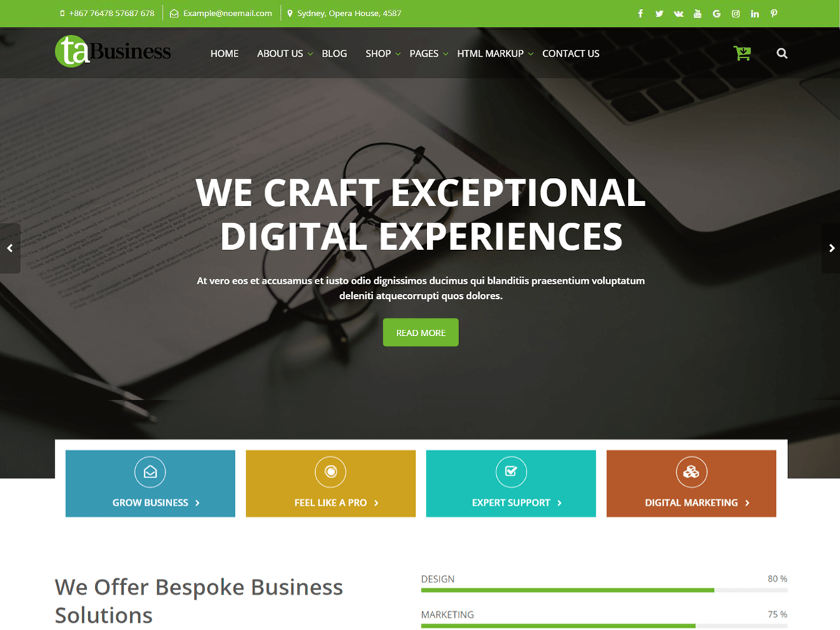WordPress主题:TA Business