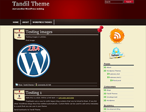 Tandil wordpress theme