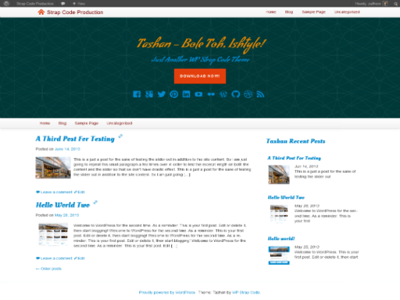 Tashan wordpress theme