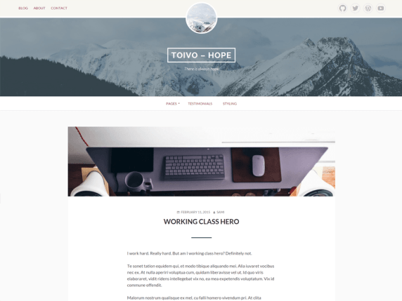 Toivo Lite wordpress theme