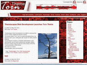 Torn free wordpress theme