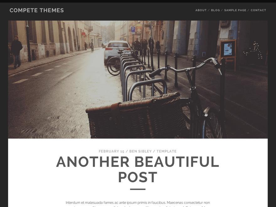 media bar controls tracks free wordpress themes