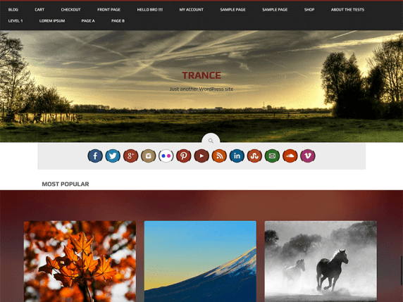 trance wordpress theme