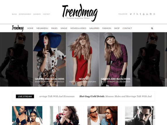 Trendmag wordpress theme