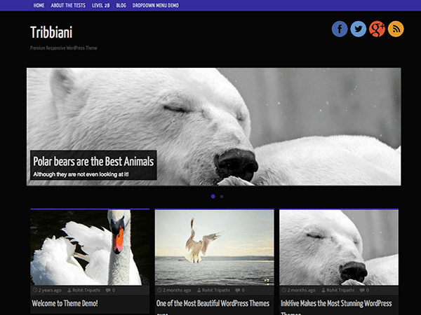 Tribbiani free wordpress theme