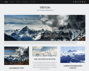 Triton Lite free wordpress theme