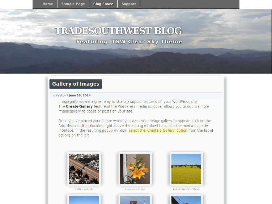 how to show only header image on homepage