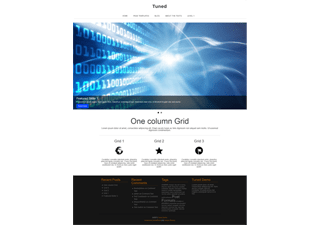 Tuned wordpress theme