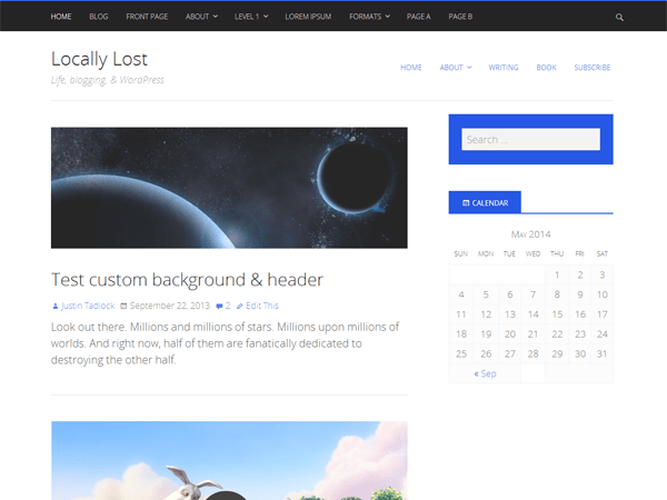 Twiggy free wordpress theme