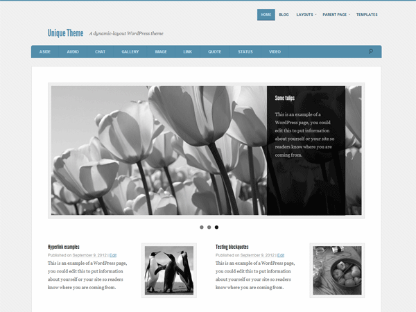 Unique free wordpress theme