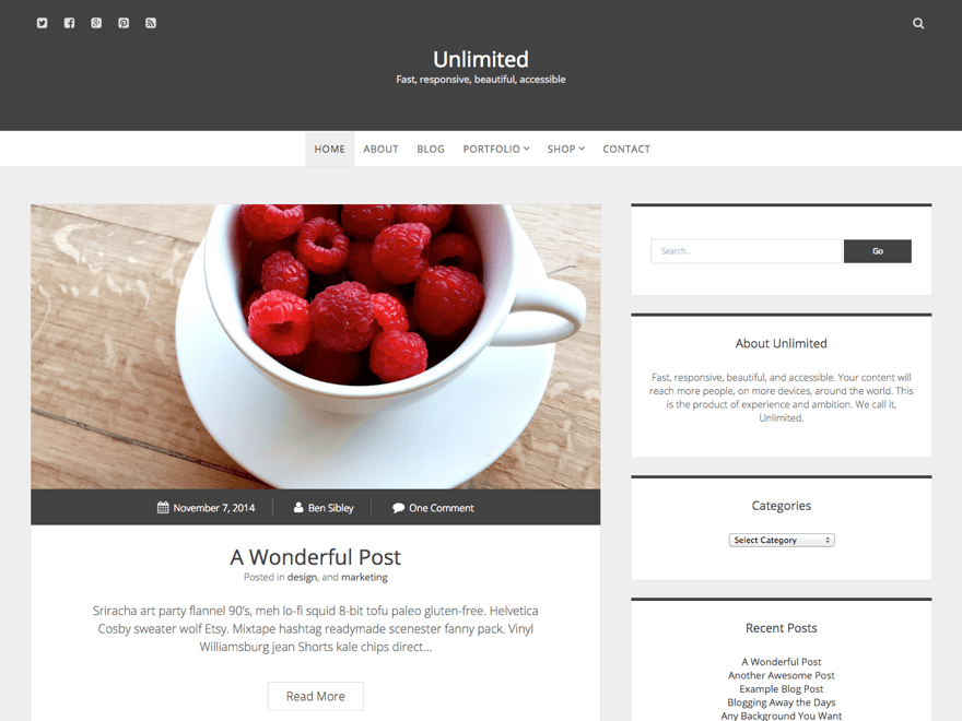 Unlimited free wordpress theme