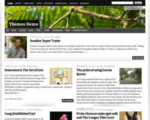 Vina free wordpress theme