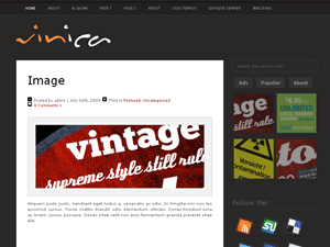 Vinica wordpress theme