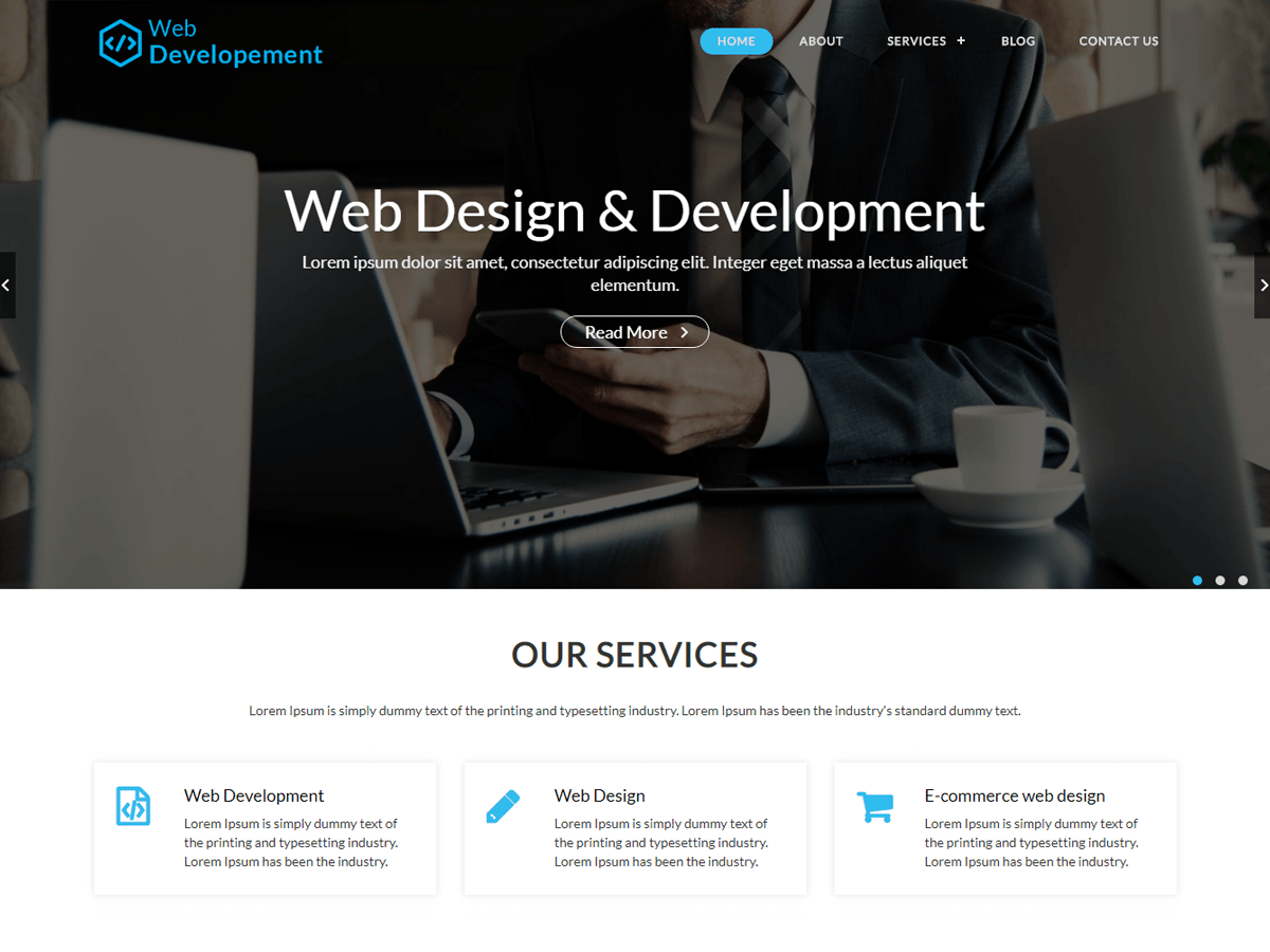 WordPress主题:Web Development