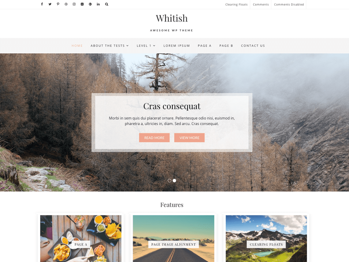 WhitishLite-best-free-portfolio-WordPress-themes-WPrevieteam