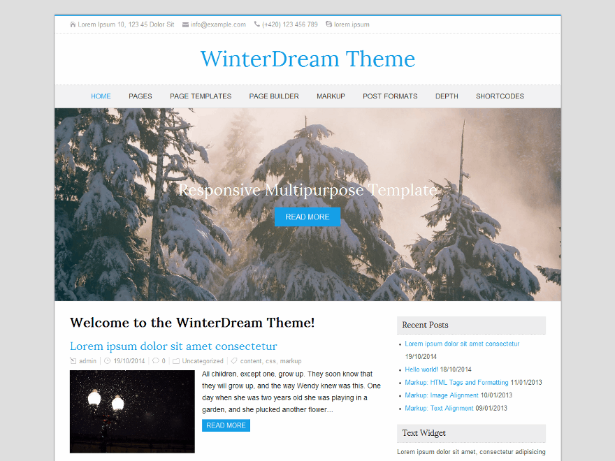 WinterDream