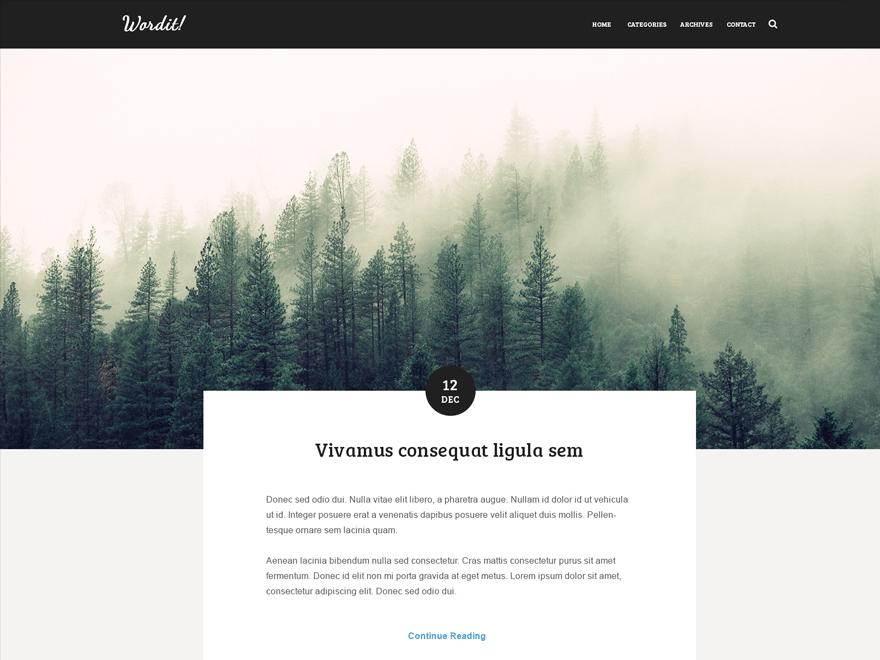 Wordit free wordpress theme
