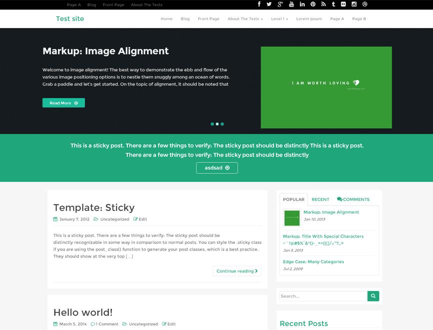 WordPress starter theme
