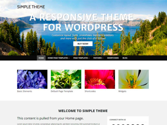 WP Simple wordpress theme