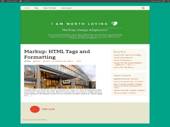 WP StrapThirteen wordpress theme
