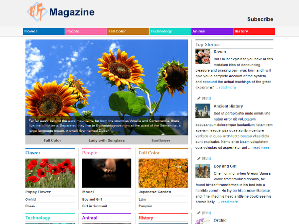 Xin Magazine free wordpress theme