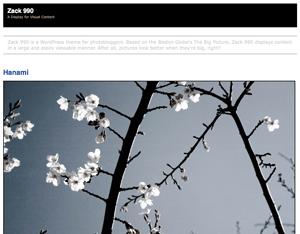 Zack 990 free wordpress theme