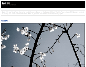 Zack 990 wordpress theme