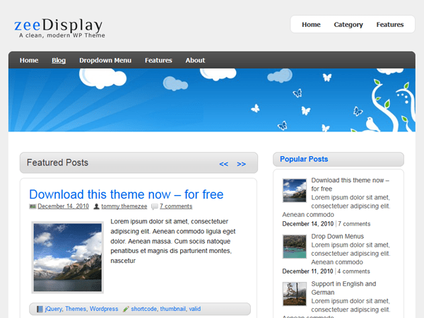 zeeDisplay free wordpress theme
