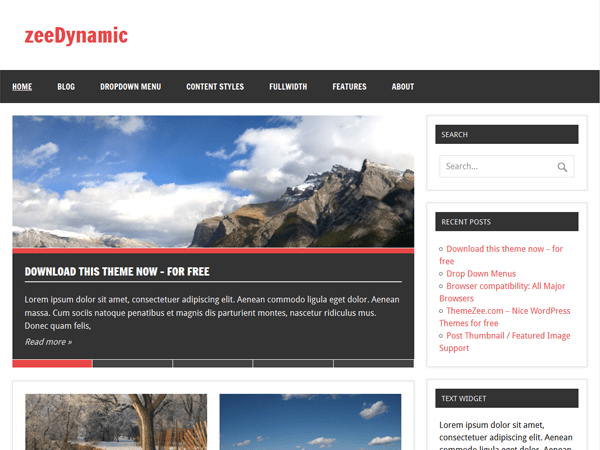 zeeDynamic free wordpress theme