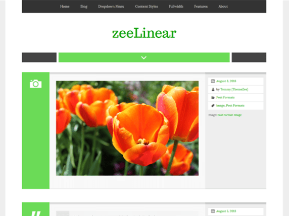 zeeLinear wordpress theme