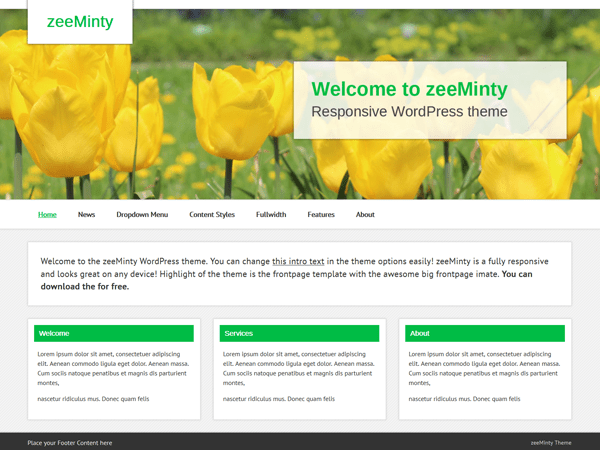 zeeMinty free wordpress theme