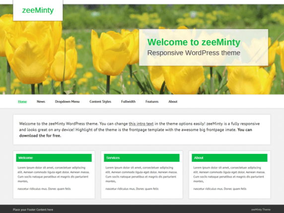 zeeMinty wordpress theme