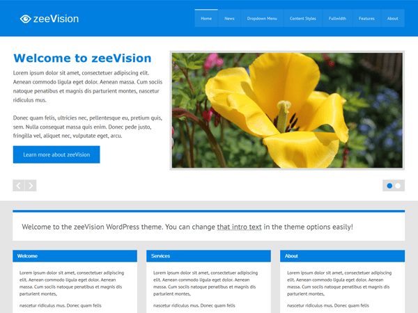 zeeVision free wordpress theme