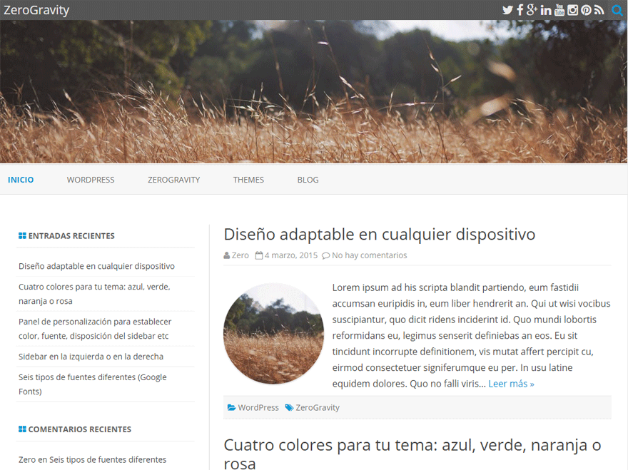ZeroGravity free wordpress theme