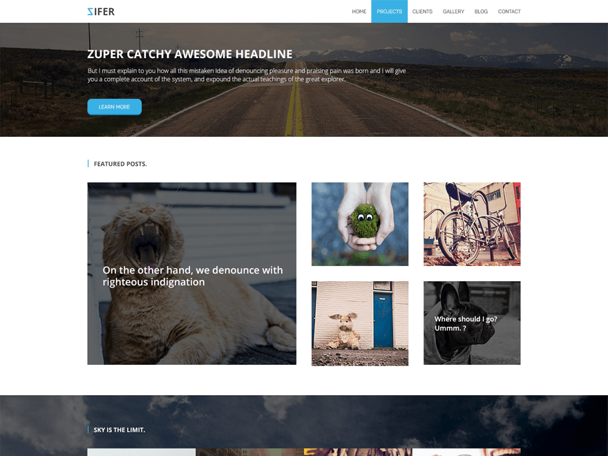 Zifer Child free wordpress theme