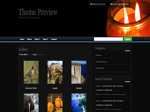 zindi-II free wordpress theme