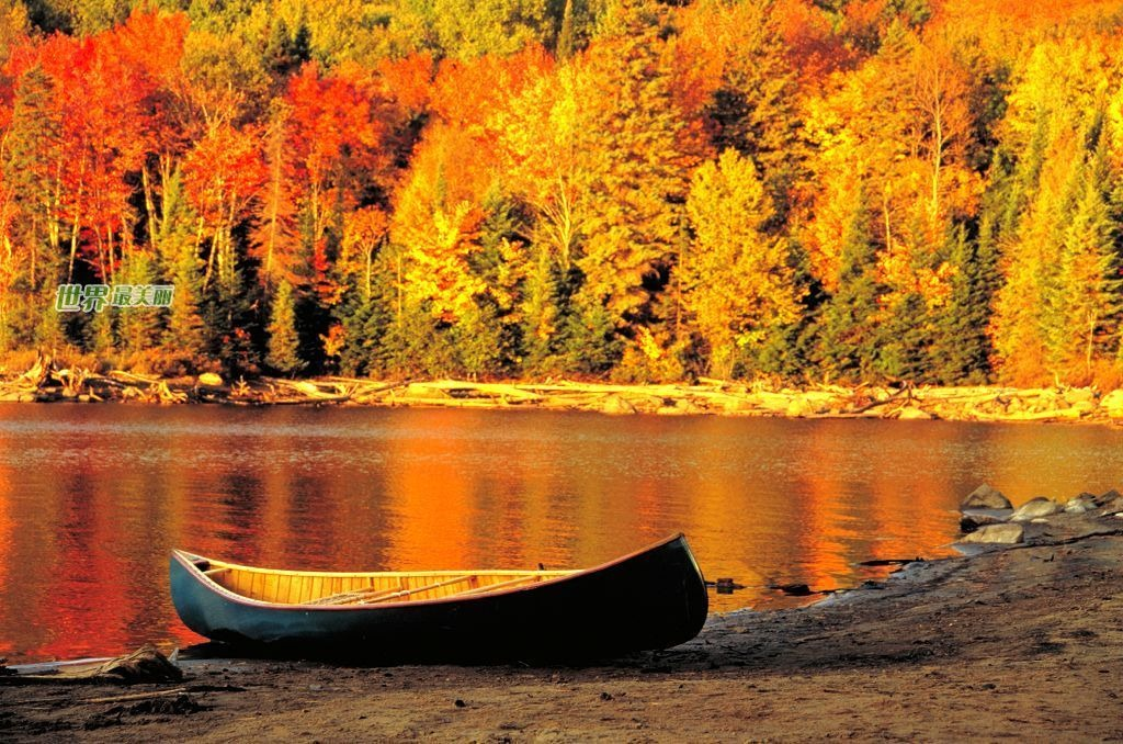 Fall Desktop Wallpaper Themes 15 Most Romantic Autumn Desktop Wallpapers Themes